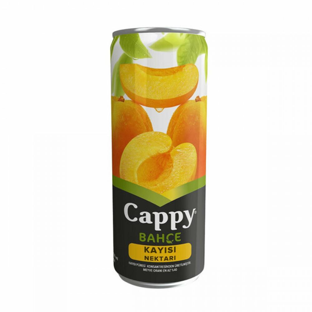 Cappy Kayısı